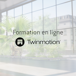 Online training Twinmotion 2 hours